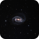 NGC1300,                                Tom Harrison