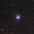 NGC 7023 Iris nebula crop,                                LeCarl99