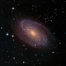 M81,                                SJK