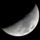 Mond 2019-02-11,                                Bruno