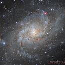 M 33,                                Lorenzo Siciliano
