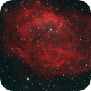 Sh2-261,                                PeterN