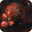 Cat's Paw Nebula, 2020,                                Scott M. Stirling