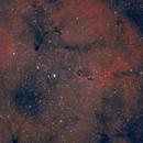 Elephant's Trunk Nebula,                                hernandezmauri
