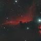 Horsehead Nebula, Barnars 33,                                Bruce Donzanti