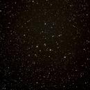 M39,                                Matt