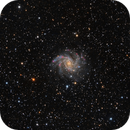 Fireworks Galaxy HaRGB,                                Rodd Dryfoos
