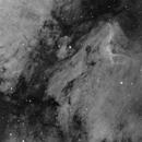 IC5070 Pelican nebula in Ha,                                Sergiy_Vakulenko
