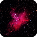 Eagle Nebula,                                Joel Brewer