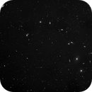WIDE Field view of Markarian's Chain,                                Andrew Santangelo