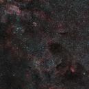 In the middle of Cygnus   - Star Sadr, Crescent & Tulip Nebula,                                Roland Schliessus