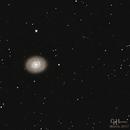 M94,                                Gordon Hansen