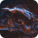 Western Veil Nebula,                                Tim Polk
