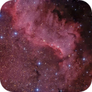 NGC 7000 - Gulf of Mexico,                                Paolo Demaria