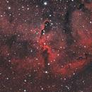 Elephant Trunk Nebula,                                Josh Van
