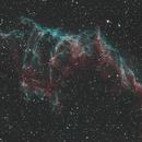 NGC 6996 NB,                                Martin