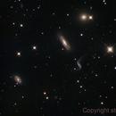 Hickson44,NGC 3190,                                Steve Yan