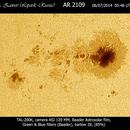 Sunspots AR2109,                                Alexander Zaitsev