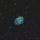 Messier 1: The Crab Nebula,                                Toshiya Arai