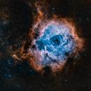 The Rosette Nebula,                                gnarayan