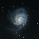 M101 The Pinwheel Galaxy - Crop,                                Trevor Gunderson