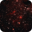 IC410 Tadpoles Closeup,                                Richard Cardoe