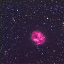 IC5146,                                Orsojogy