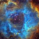 Rosette nebula in HSO,                                Quek Zong Ye