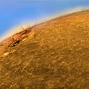 Solar active area (12422),                                Stephan Reinhold