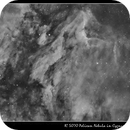 Pelican Nebula (IC 5070),                                Mike Oates