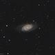 NGC 2903,                                Marc Verhoeven