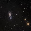 NGC 3338 im Löwen,                                Martin Luther