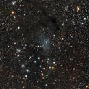 NGC 225  Sailboat Cluster, vdB 4,                                Doug Summers
