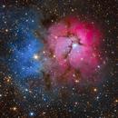 Trifid Nebula,                                Colin