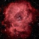 NGC 2237 .Rosettennebel ,                                skywatcher1980