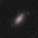 M63 - Sunflower galaxy (osc+L),                                Almos Balasi