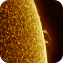 Solar Prominence II, Colored, April 16th 2018,                                Martin (Marty) Wise