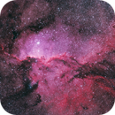 NGC 6188 The Fighting Dragons of Ara,                                Don Pearce