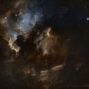 NGC7000, IC5070/68 Hyperstar,                                Bradisback