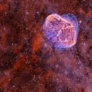Crescent nebula (NGC 6888) and Soap Bubble Nebula (PN G75.5+1.7),                                Ricardo Pereira