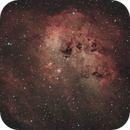 IC410 the Tadpoles,                                Bret Waddington