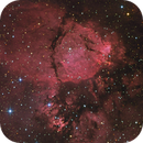 IC1795 - The Fish Head Nebula,                                John Sokol