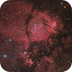 IC1795 - The Fish Head Nebula,                                John Sokol