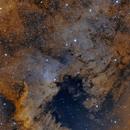 NGC 7000 North American Nebula,                                Matthew Enrietta