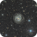 "Report of New Features Imaged in M 83, ""The Southern Pinwheel Galaxy"",                                Alex Woronow"