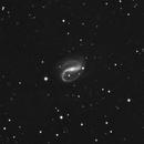 NGC 7479,                                Günther Eder