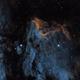 Pelican Nebula (IC 5070),                                Kevin Fordham