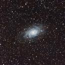 M33,                                Riley Weller