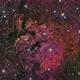 NGC7822,                                Matt Jenkins