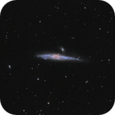 NGC 4631 - The Whale Galaxy,                                Samuli Vuorinen